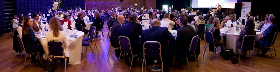 Chamber Business Awards 2019 Sponsors page banner image